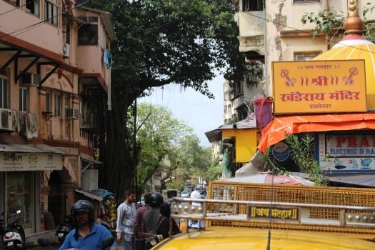 Mumbai August 2017 (75)