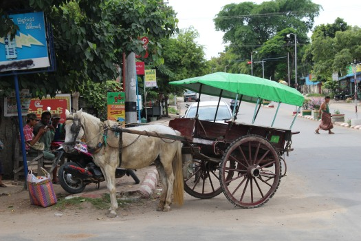 Myanmar 2016 1161