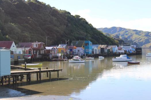 New Zealand July 2017 (199)