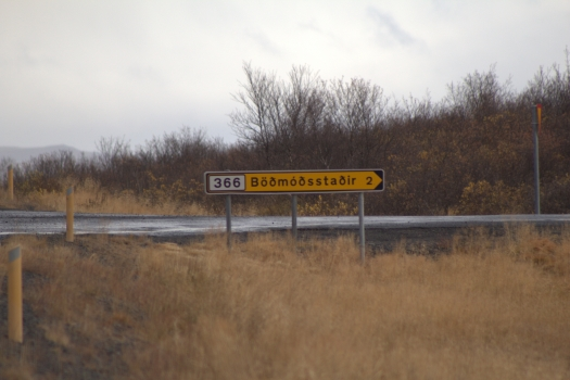 Iceland (542)