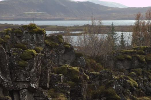 Iceland (574)