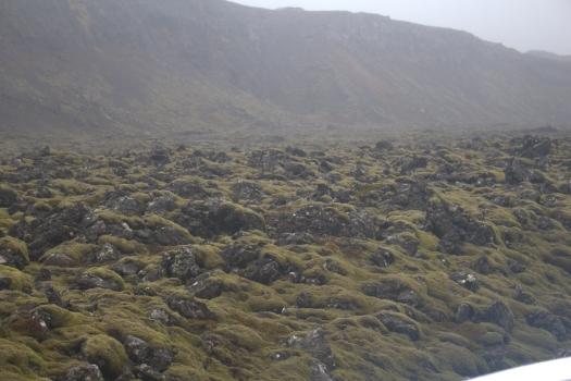 Iceland (836)
