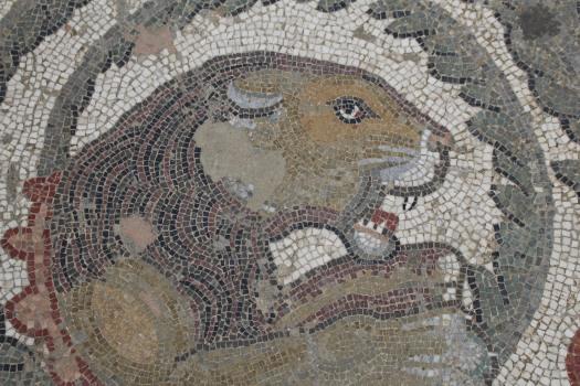 Sicily Amerina mosaics Sept 2018 (63)