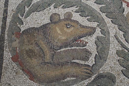 Sicily Amerina mosaics Sept 2018 (64)