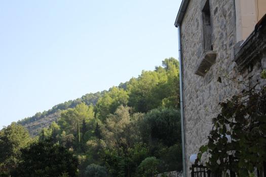 Sicily farm Sept 2018 (129)