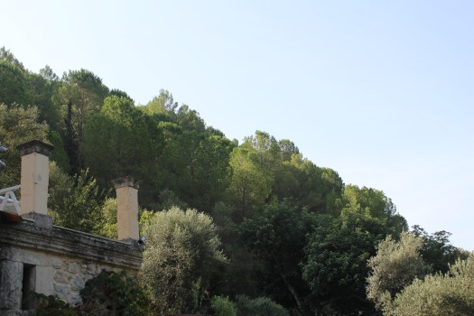 Sicily farm Sept 2018 (132)