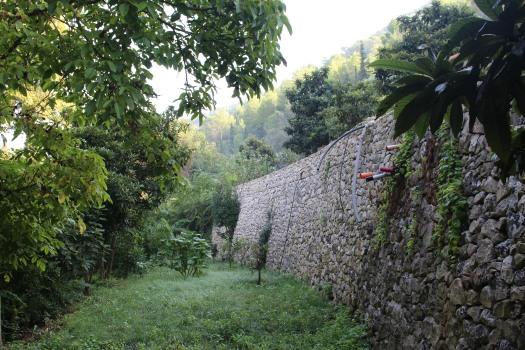 Sicily farm Sept 2018 (81)
