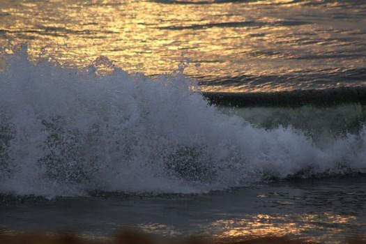 Candolim Beach (15)
