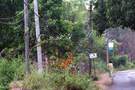 Goa towards Porvorim 2 (29)-1
