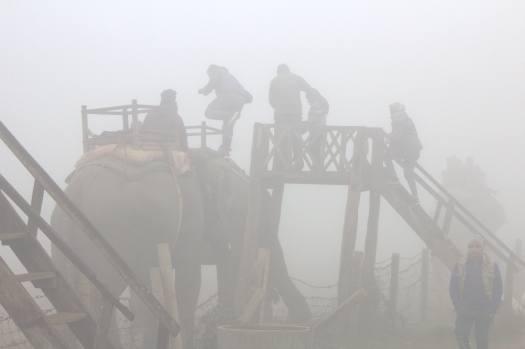 nepal january 2019 (180)