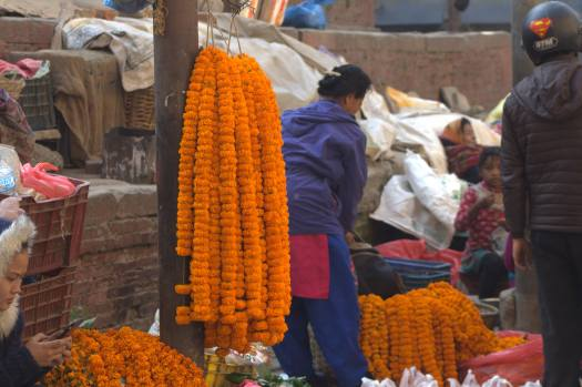 nepal january 2019 (30)
