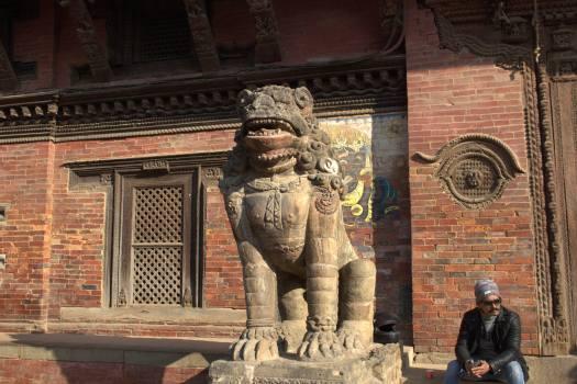 nepal january 2019 (495)