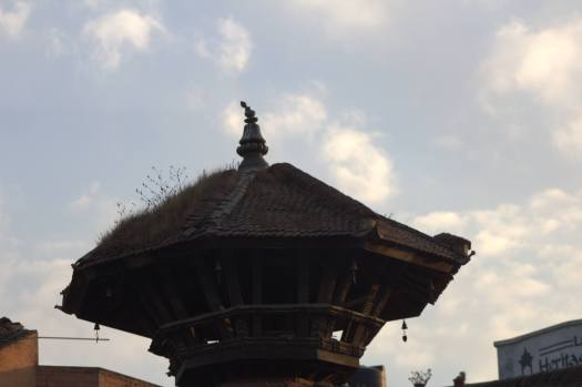 nepal january 2019 (85)