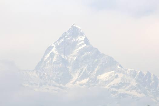 nepal january 2019 (88)