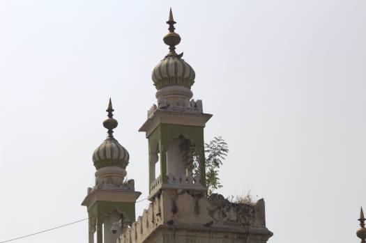 Hyderabad January 2019 (11)
