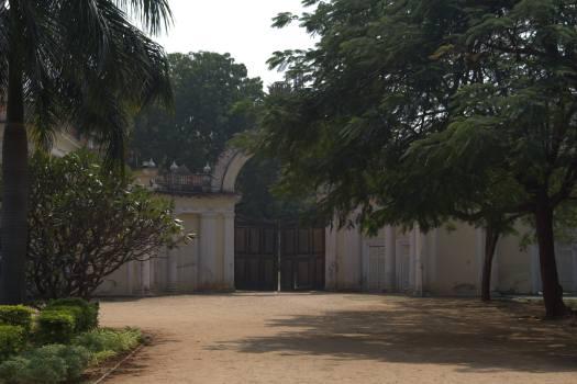 Hyderabad January 2019 (187)