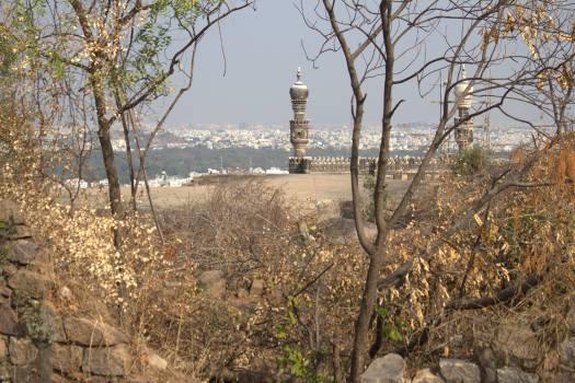 Hyderabad January 2019 (257)