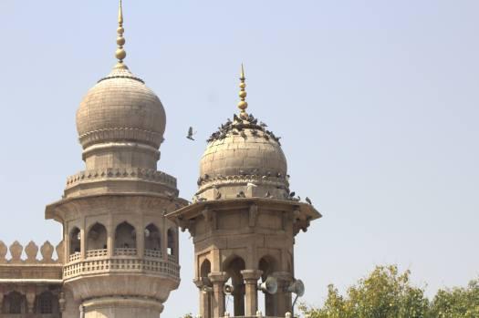 Hyderabad January 2019 (27)