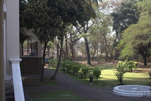 Pune February 2019 (29)