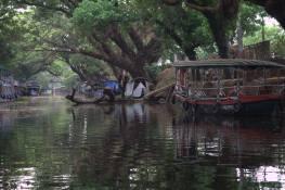 Alleppey Backwaters 2 (242)