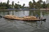 Alleppey backwaters (223)