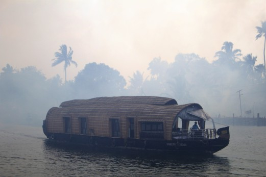 Alleppey backwaters (241)