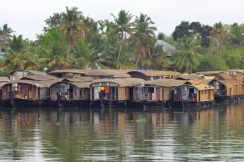 Alleppey backwaters (253)