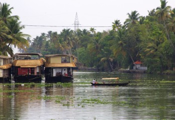 Alleppey backwaters (262)