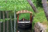 Alleppey backwaters (265)
