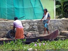 Alleppey backwaters (288)