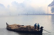 Alleppey backwaters (353)