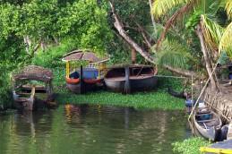 Alleppey backwaters (391)