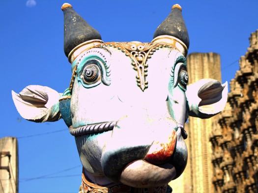 Madurai (107)