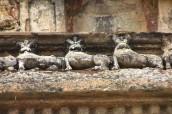 Polonnaruwa (235)