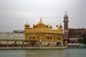 Amritsar (167)