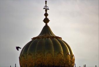 Amritsar (19)