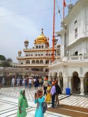 Amritsar mobile (14)