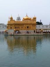 Amritsar mobile (4)