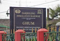 Darjeeling (147)