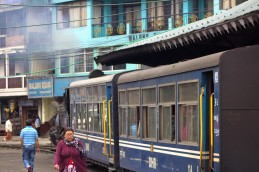 Darjeeling (167)
