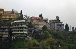 Darjeeling (236)
