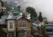 Darjeeling (351)