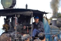 Darjeeling (426)