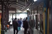 Darjeeling (468)