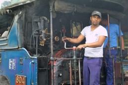 Darjeeling (486)