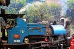 Darjeeling (506)