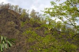 Darjeeling to Gangtok drive (29)