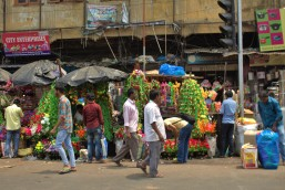 Kolkata (182)