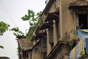 Kolkata (82)