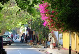 Pondicherry (1) (2)